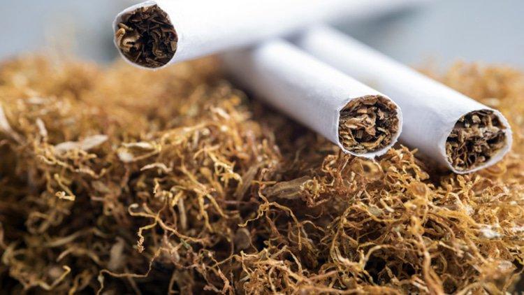 tytoń online